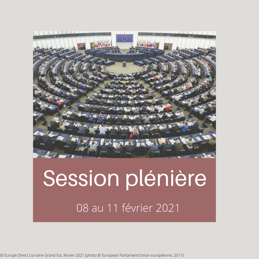 SESSION PLENIERE 2021 02